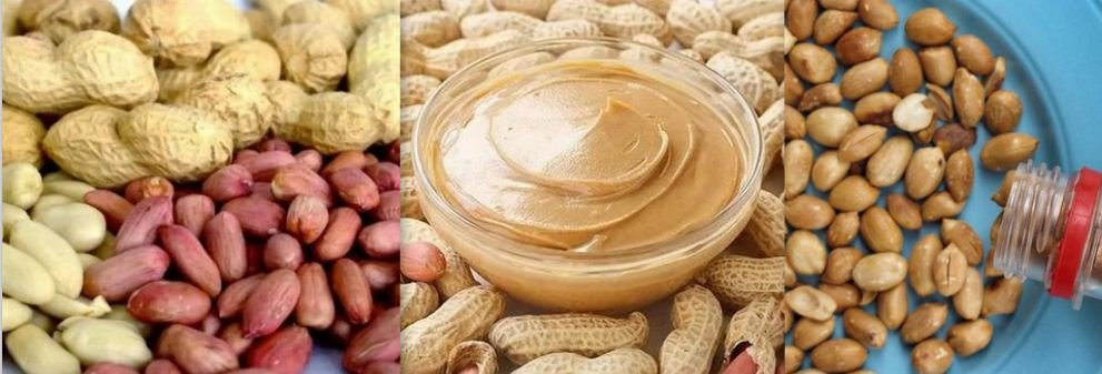 Groundnut: 7 Overwhelming Health Benefits of Groundnuts